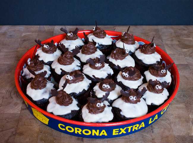 Picture of cupcakes on a tray decorated with moose made from chocolate frosting and chocolate.
