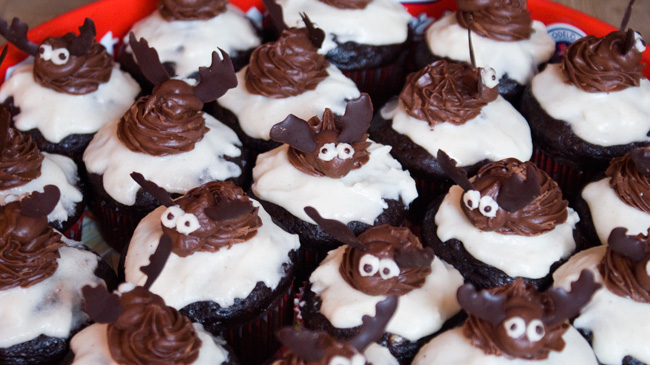 Close-up picture of cupcakes on a tray decorated with moose made from chocolate frosting and chocolate.