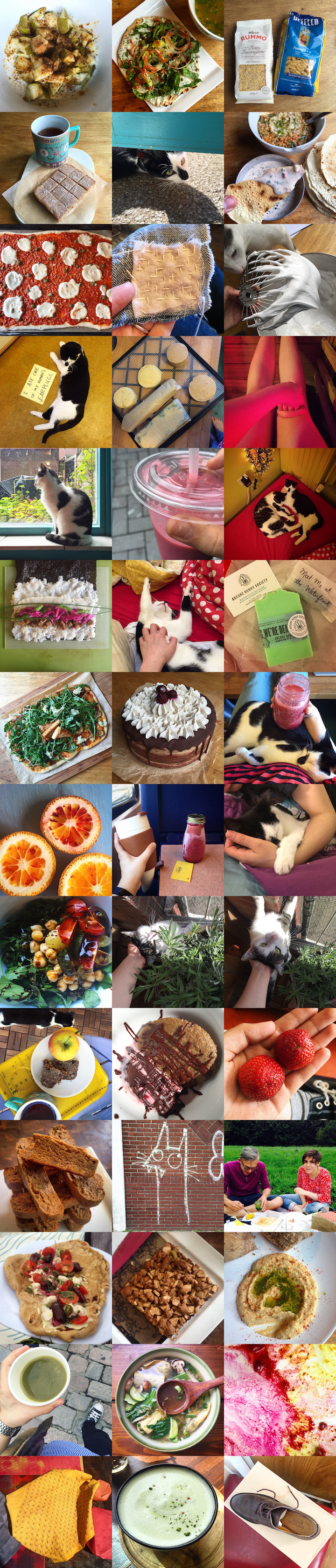3 by 14 grid featuring 42 instagram pictures mostly showing cats or food.